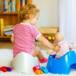 Potty-training a toddler: how to go about it!
