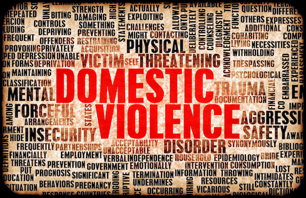 dazzling-insights-domestic violence