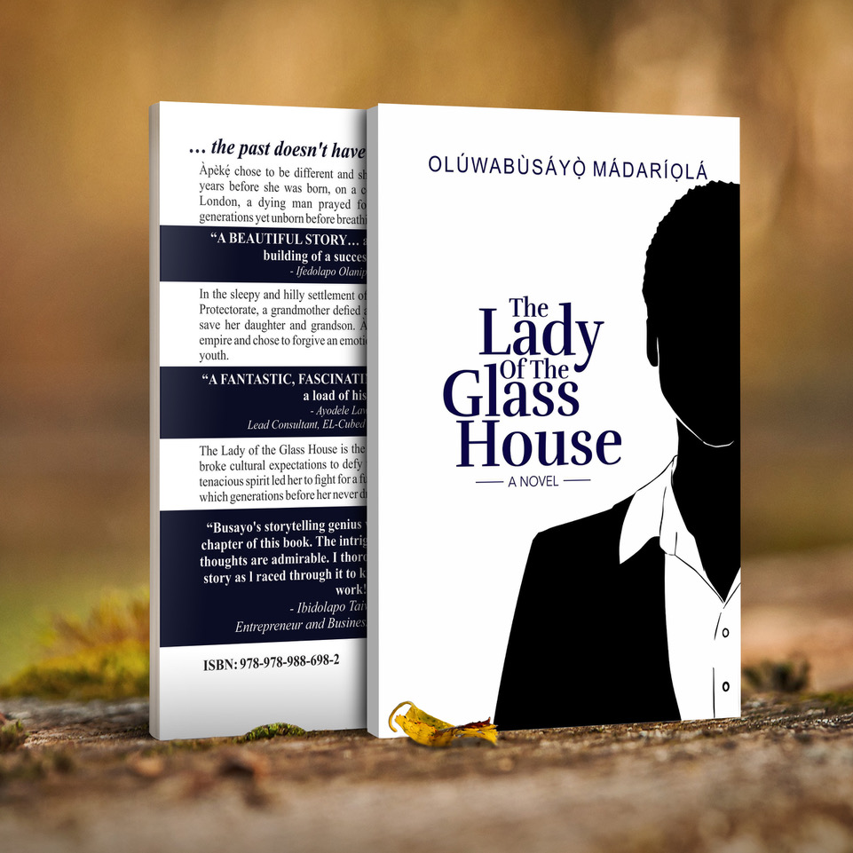 dazzling-insights_the lady of the glass house cover